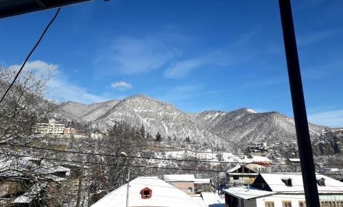 Guest House Metreveli - фото 1