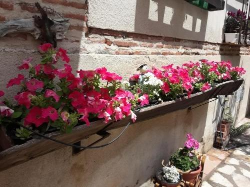Posada La Casa de Las Manuelas - фото 16