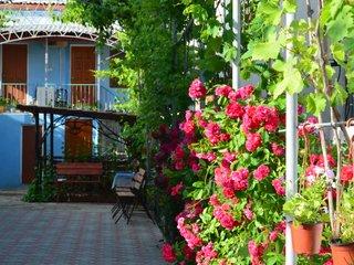 Фото отеля Dolce Vita