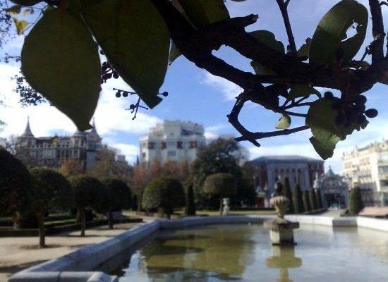 Apartment Olivar - фото 5