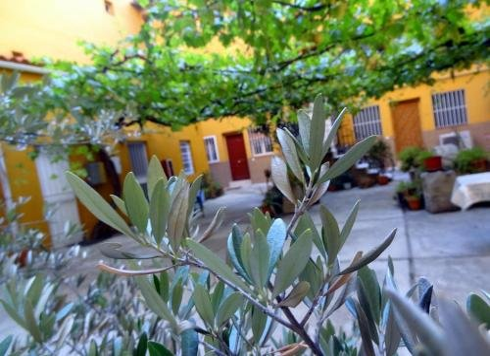 Apartment Olivar - фото 7