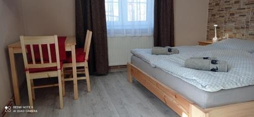 Penzion U Splavu - фото 18
