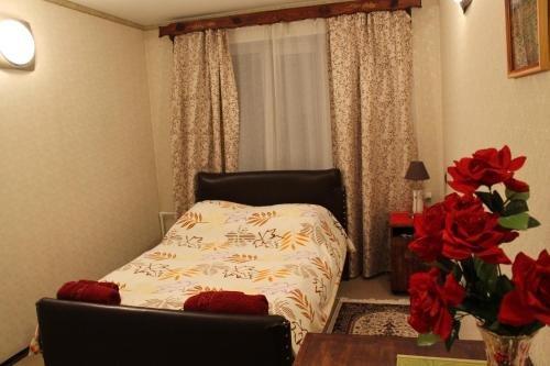 Мини-отель Клен - фото 1