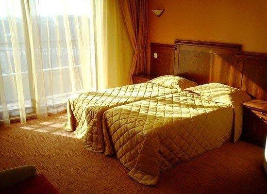 Отель Боляри - фото 28