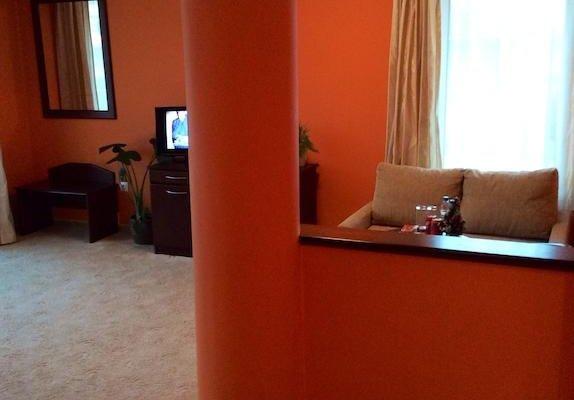 Hotel Elena - фото 20