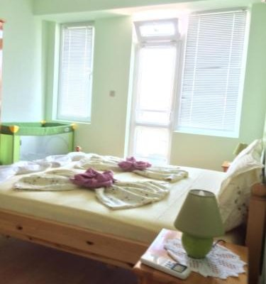 Andonov Guest House - фото 1