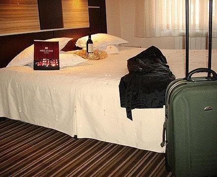 Hotel Orlando - фото 4
