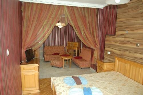 Stivan Iskar Hotel - фото 50