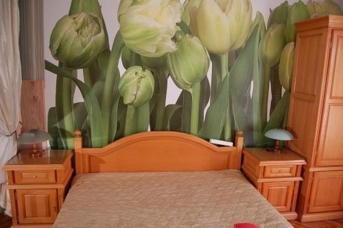 Stivan Iskar Hotel - фото 19