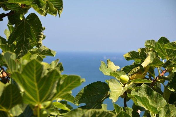 Blue Island Villa Caterina - фото 19