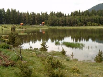 The Lake Villa - фото 20