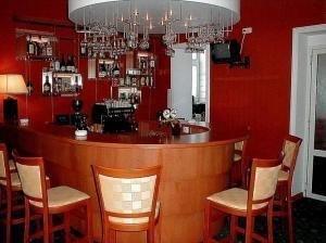 Hotel Zlata Praha - фото 5
