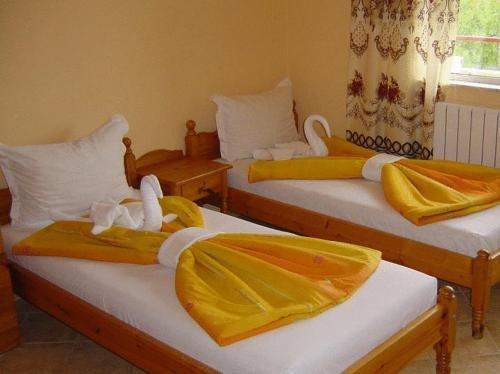 Отель Вива Бийч - фото 6