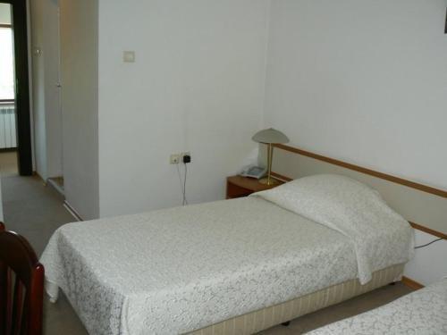 Orbita Palace Hotel - фото 4