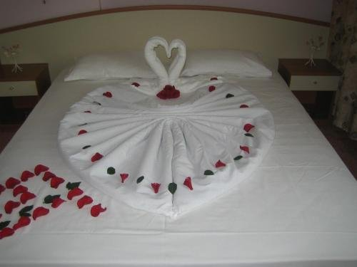 Struma Hotel - фото 4