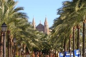 Fortuna Mallorca Este - фото 2