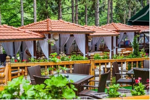 Hotel Park Bachinovo - фото 18