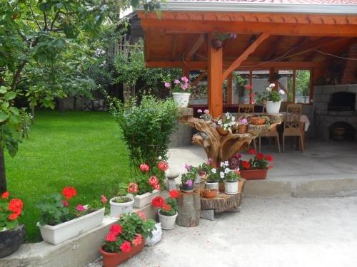 Vien Guest House - фото 8