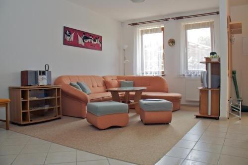 Svetnov Apartments - фото 3