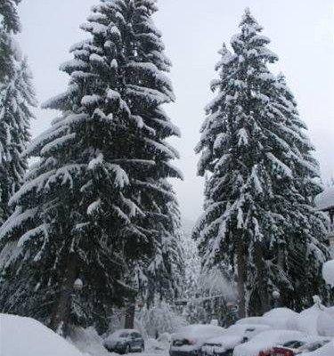 Ski Hotel Katerina - фото 20