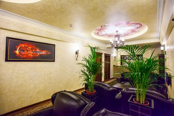 Отель Скрипка - фото 12