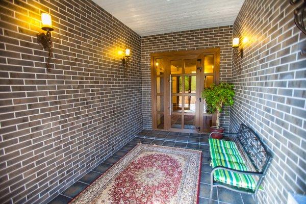 Отель Скрипка - фото 19