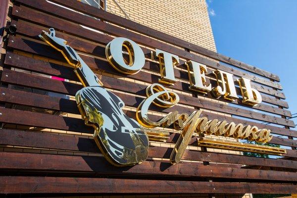Отель Скрипка - фото 20