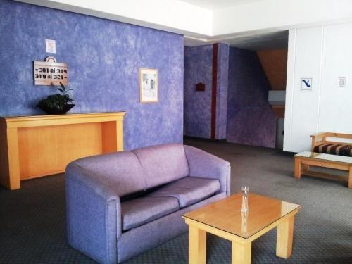 Hotel Inn Sur - фото 12