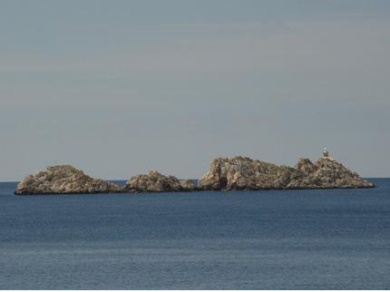 Dubrovnik Apartments - Только для взрослых - фото 22