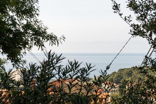 B&B Villa Dubrovnik Garden - фото 20