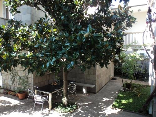 Apartments Deranja - фото 13