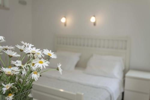 Suncana Apartments Dubrovnik - фото 1