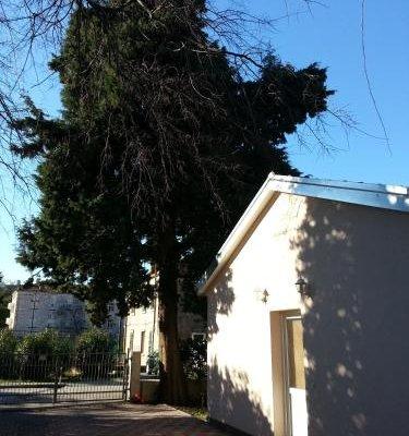 Apartments Dalmatino - фото 18