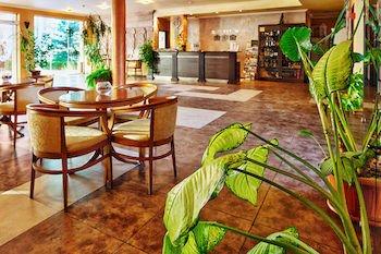 Hotel Forum - фото 14