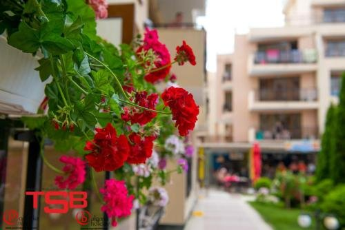 TSB Sunny Victory Apartments - фото 12