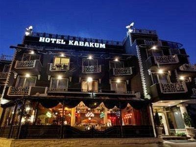 Hotel Kabakum - фото 23