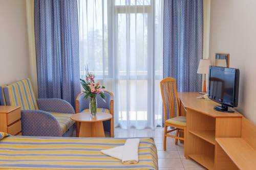 Lebed Hotel All Inclusive - фото 8