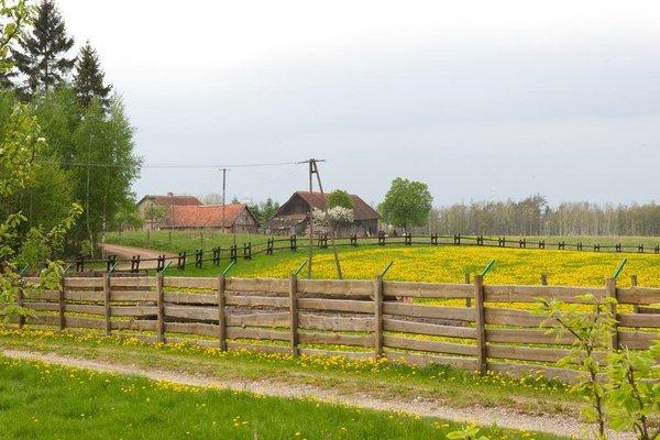 Gosciniec Bocianowo - фото 4