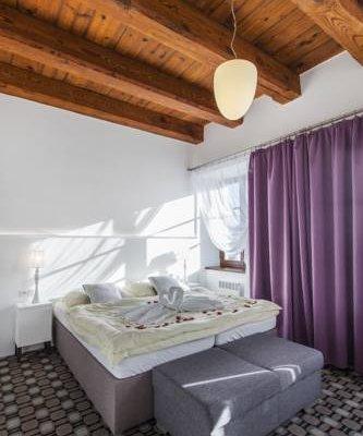 Hotel Salety - фото 2
