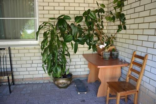 Guest House Vizit - фото 9