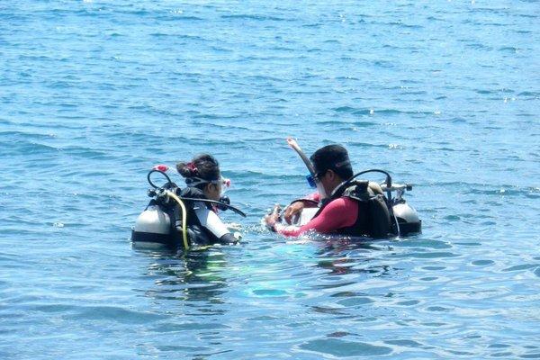Leyte Dive Resort - фото 17