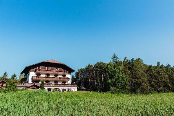 Hotel Waldsee - фото 22