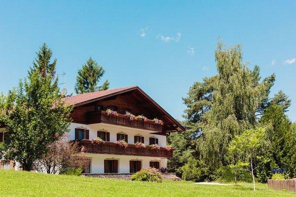 Hotel Waldsee - фото 23