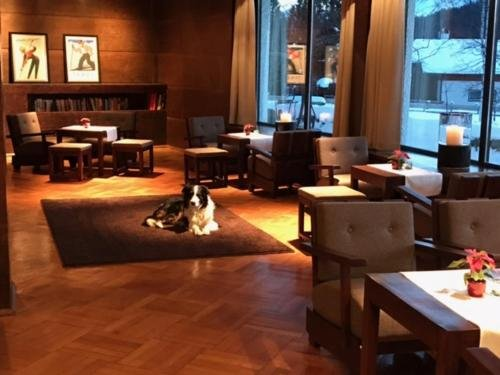 Hotel Berghof - фото 15