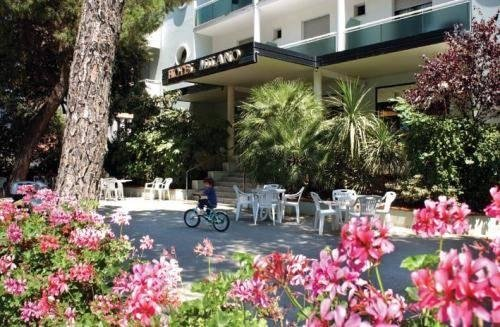 Hotel Milano Ile De France - фото 4