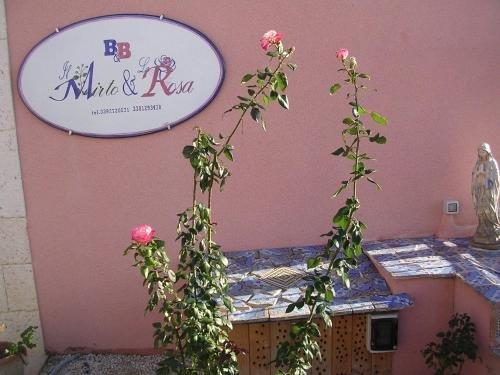 Il Mirto e La Rosa - фото 14