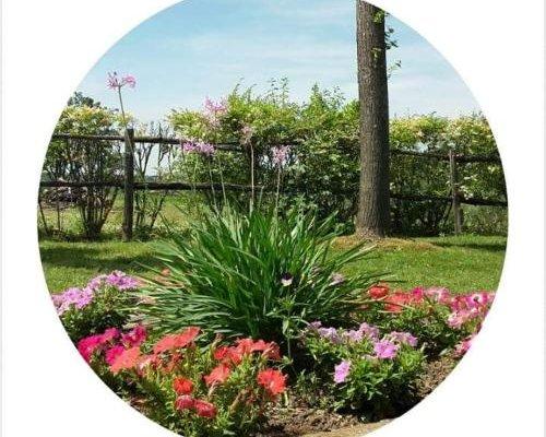 La Fattoria Barbini B&B - фото 1