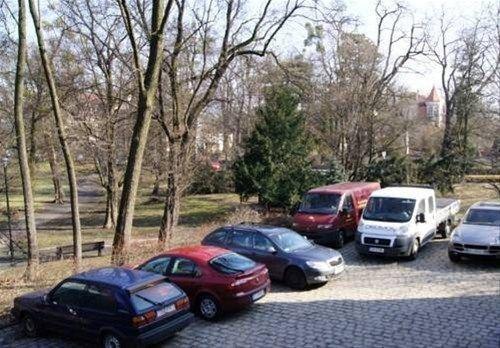 Green Hostel Wroclaw - фото 19