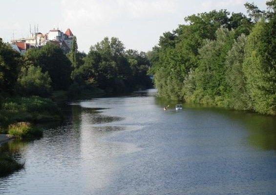 Green Hostel Wroclaw - фото 20