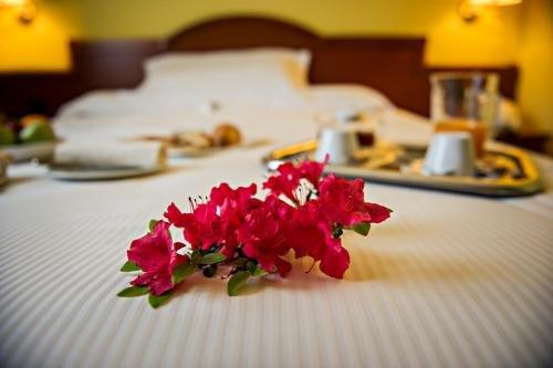 Hotel Cinzia Ristorante - фото 17